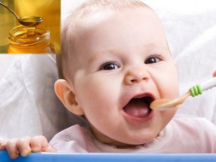 makan madu