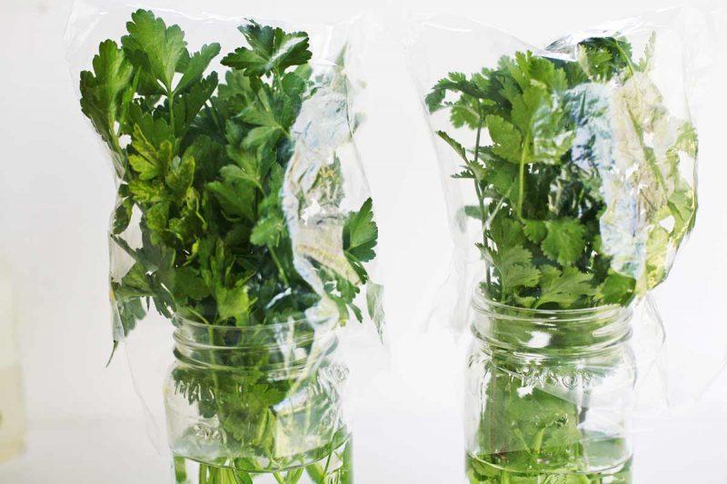 air rebusan parsley