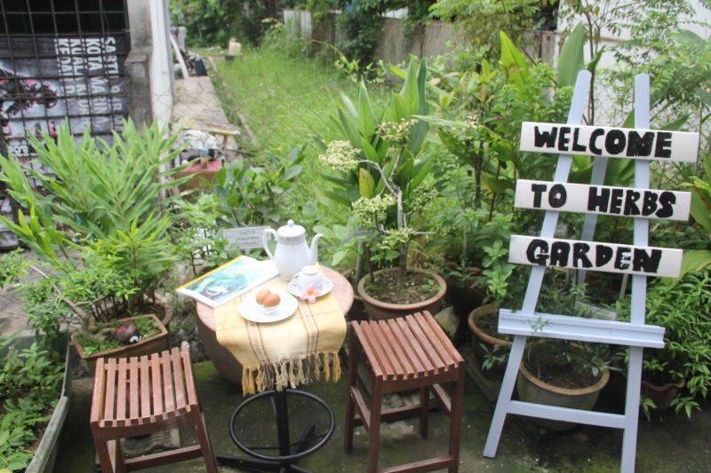 'Sejuk Tangan Dia', Ini 9 Rahsia Taman Herba Belakang Rumah Teres Lot Tengah Subur Menghijau