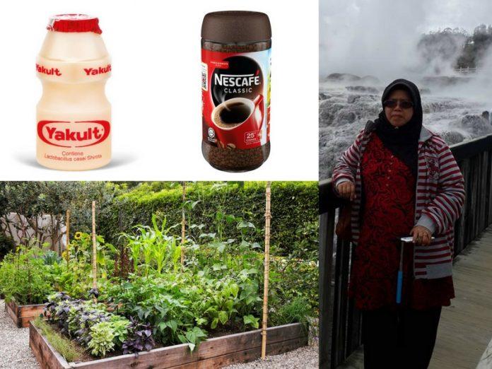 Halau Perosak Pakai Racun Nescafe Dan Yakult, Nanti Sayuran Pun Jadi Manis