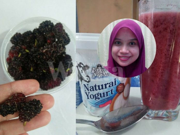 yogurt mulberry