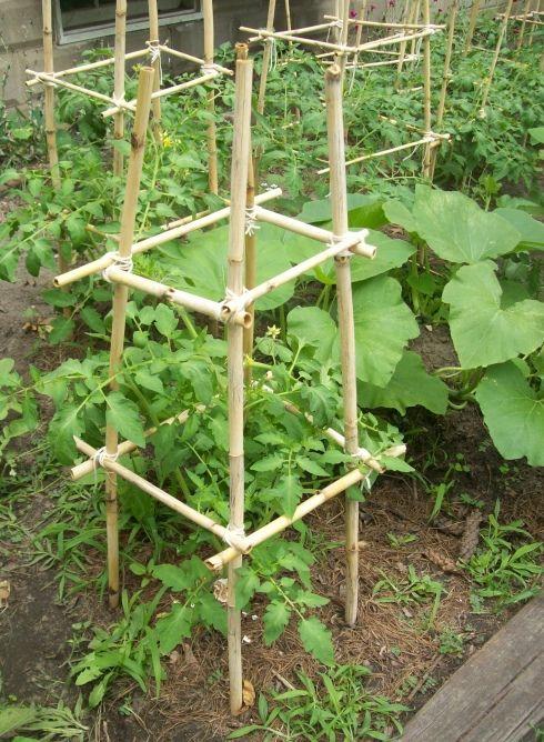 Kebun Komuniti Tempat Maya Karin Buat Kerja Sukarela, Sedia Sayuran Percuma