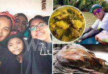 Hari Kejadian Arwah Pitt Ada Simpan Ikan, Untuk Isteri Masak Di KL