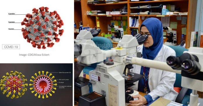Bila Covid-19 HIJACK Sel Badan, Tubuh Diibaratkan Jadi Kilang Pemproses Virus