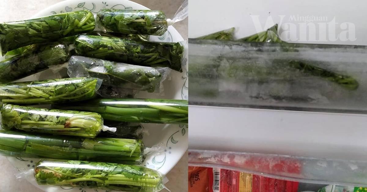 Cara Simpan Sayuran Herba Dalam Plastik Aiskrim, KEKAL SEGAR Dan Tahan LAMA!