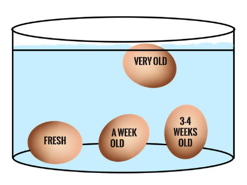 Jangan Sampai Termakan Telur Luput Tarikh, Ketahui Cara Simpan, Masih Segarkah & Selamat Dimasak!