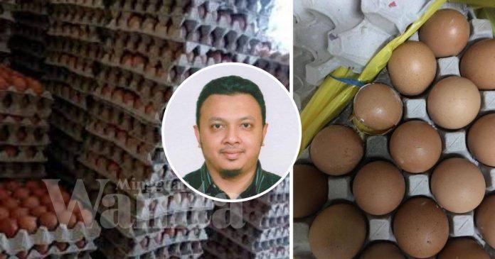 Hilang Kerja, Isteri Mengandung, Sepapan Telur Itulah Lauk Anak-Beranak Sebulan
