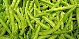 Khasiat & Manfaat Kacang Buncis Yang Perlu Kita Tahu