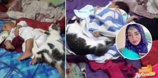 'Dari Baby Dalam Perut Sampai Lahir Dia Punya Sayang..' Setia Seekor Kucing