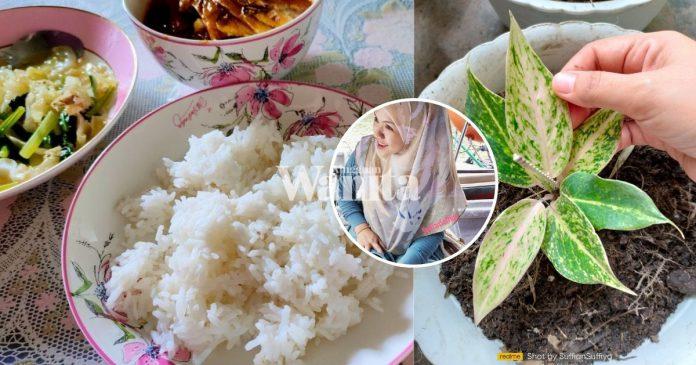 sibuk-kerja-dapur-terlupa-makan-nasi